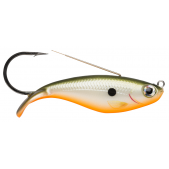 WSD08 (RFSH) Redfin Shiner