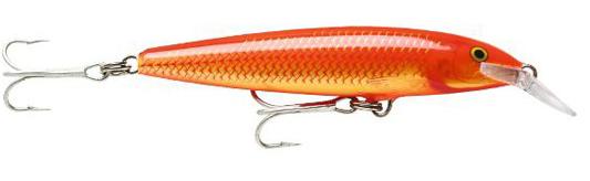 (GF) Goldfish