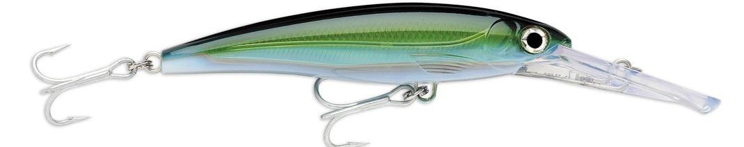 (YFT) Yellowfin Tuna