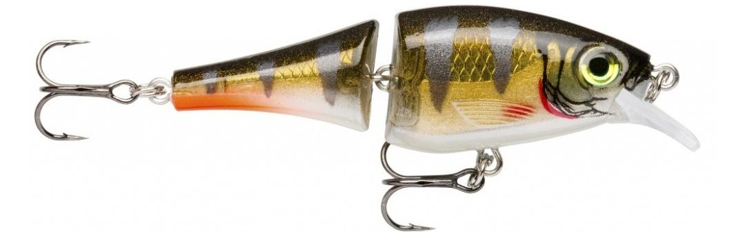 (RFP) Redfin Perch