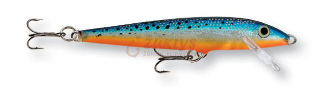 (BSM) Blue Spotted Minnow