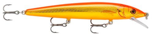 (GF) Gold Fish