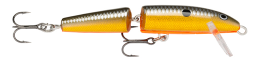 (OGSD) Orange Gold Shad